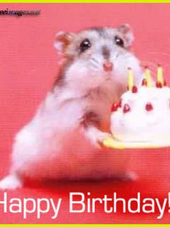happy_birthday_07