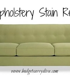 diy upholstery stain remover