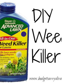 How Make Homemade Weed Killer Budget Savvy Diva