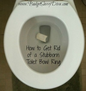 How To Get Rid Of A Stubborn Toilet Bowl Ring Budget