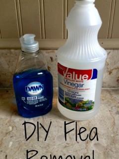 diy flea remover