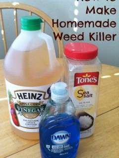 how to make shower cleaner