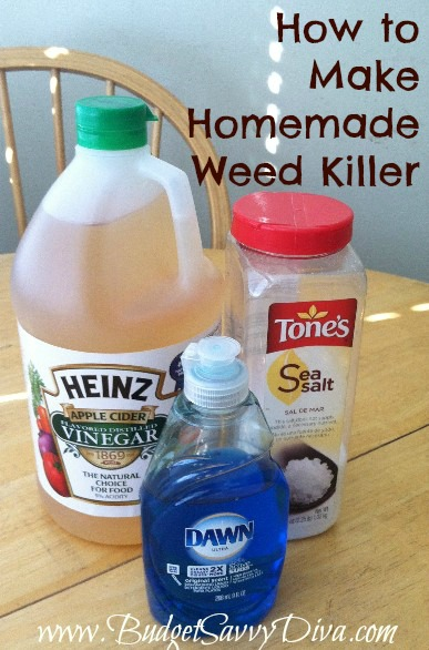 HOMEMADE HERBICIDE WEED KILLER