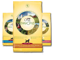FREE Sample of Purina ONE Beyond Dog Food | Budget Savvy Diva