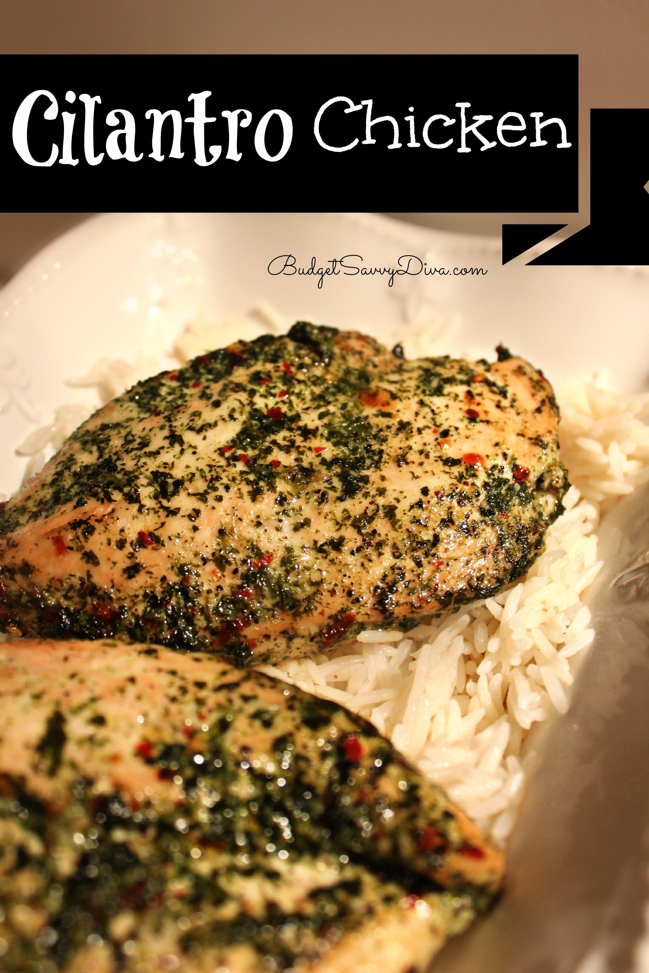 Cilantro Chicken Recipe | Budget Savvy Diva