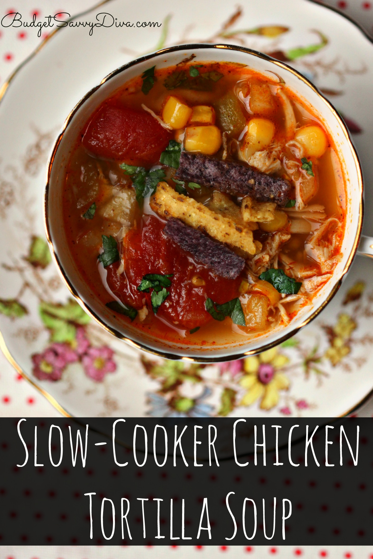 Slow Cooker Chicken Tortilla Soup Recipe Budget Savvy Diva