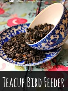 teacup feede 2