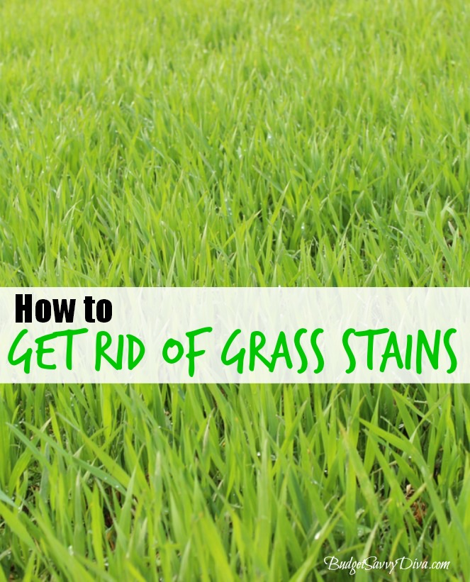 How To Remove Grass Stains From Clothing Budget Savvy Diva