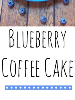 Blueberry Coffee Cake FINAL