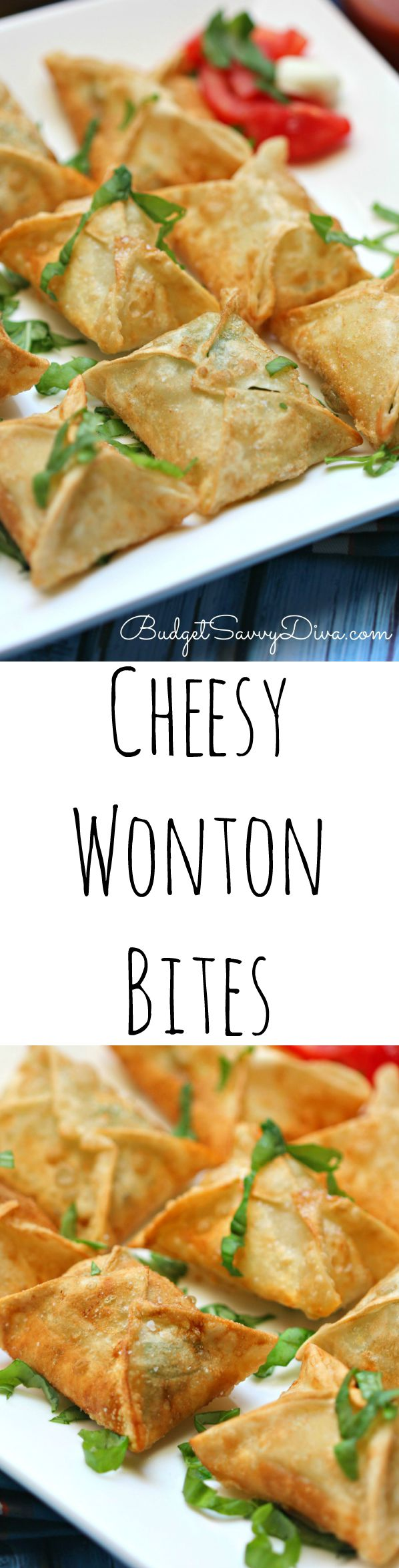 cheesy wonton bites FINAL