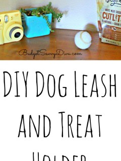 DIY Dog Leash and Treat Holder Purina Beyond