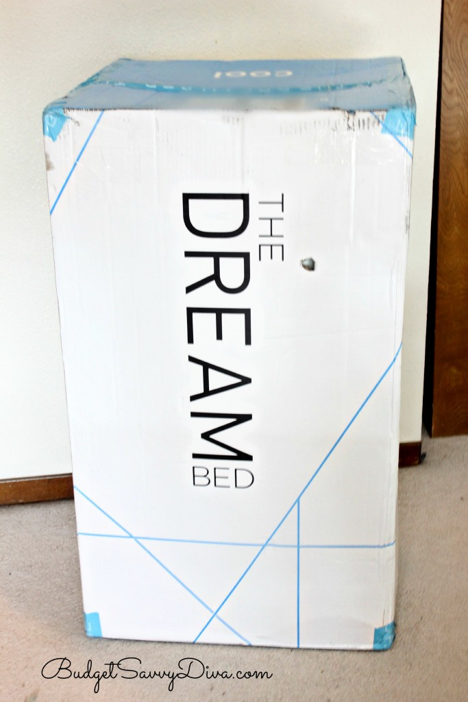 Dream Bed 3