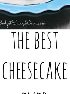 Squirt Cheesecake FINAL