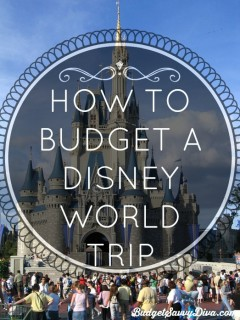 HOW TO BUDGET A DISNEY WORLD TRIP (AND HAVE FUN DOING IT!)