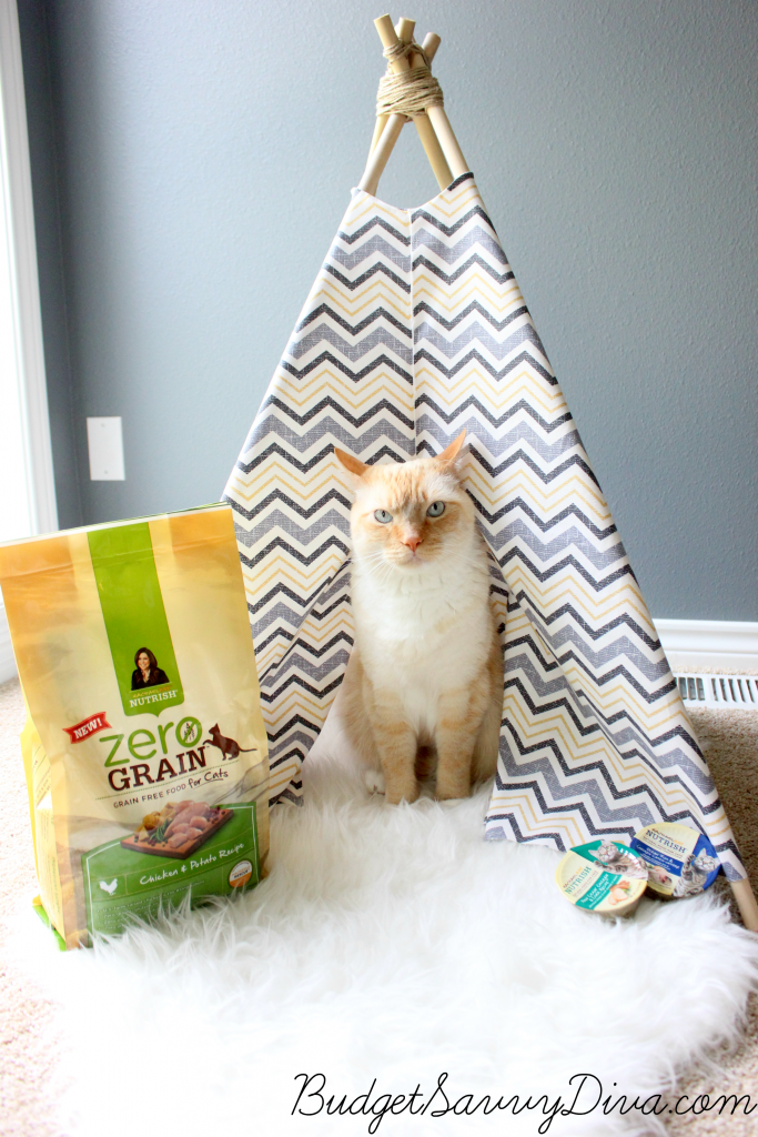 How to make a cat teepee budget savvy diva for Diy cat teepee