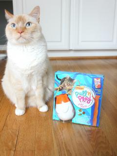 cat-toy-3