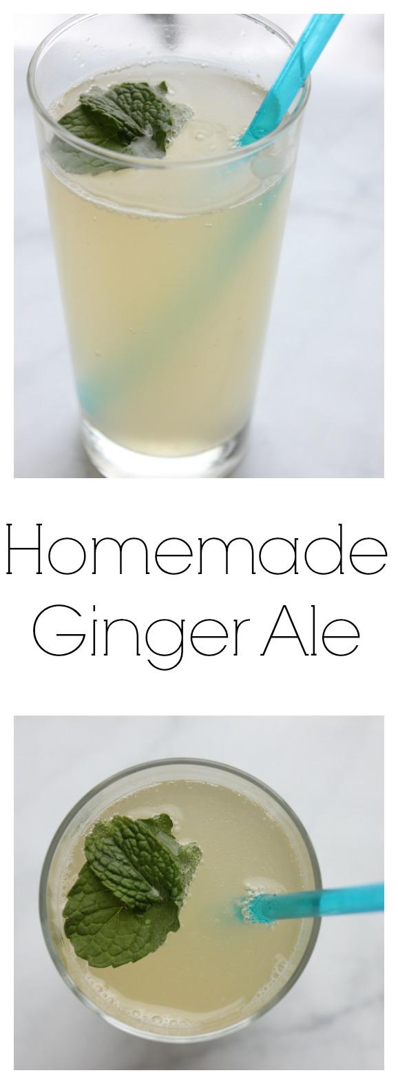 Homemade Ginger Ale   Budget Savvy Diva