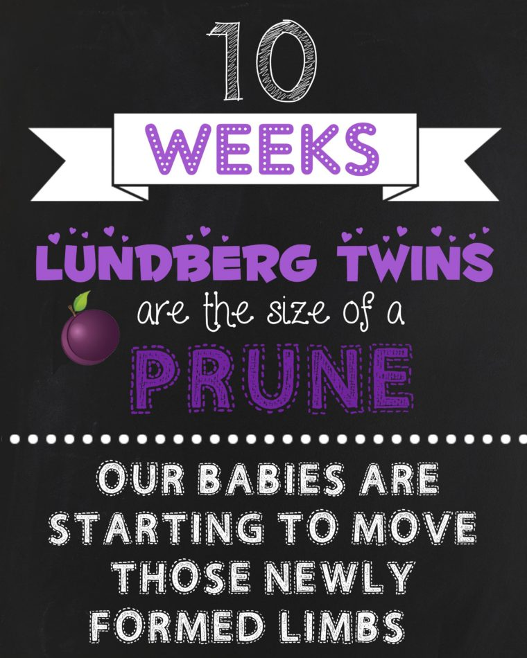 10 Weeks Pregnant With Twins Update